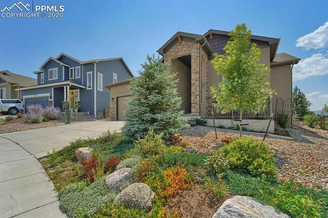 869 Tailings Drive, Monument, CO 80132 (#9438834) :: The Harling Team @ Homesmart Realty Group