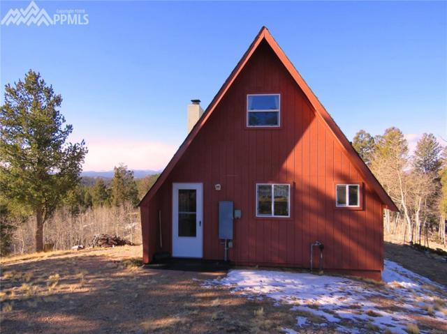 76 Green Horn Trail, Florissant, CO 80816 (#9445016) :: 8z Real Estate