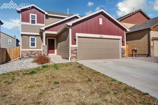 6124 Wood Bison Trail, Colorado Springs, CO 80925 (#9446784) :: Action Team Realty