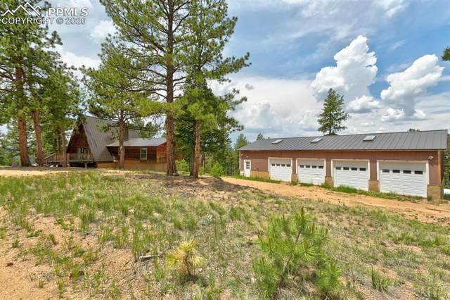 4561 W Highway 24, Florissant, CO 80816 (#9449292) :: Tommy Daly Home Team