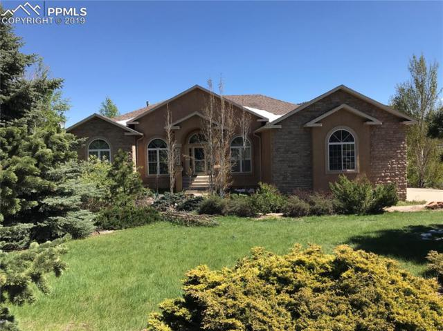 20230 True Vista Circle, Monument, CO 80132 (#9452174) :: Colorado Home Finder Realty