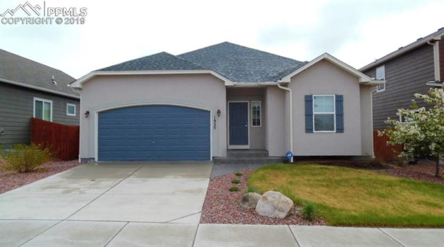 1955 Reed Grass Way, Colorado Springs, CO 80915 (#9456949) :: Fisk Team, RE/MAX Properties, Inc.