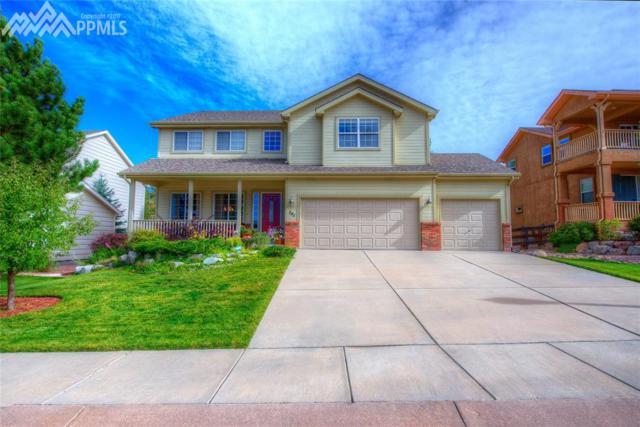 741 Saber Creek Drive, Monument, CO 80132 (#9456970) :: 8z Real Estate