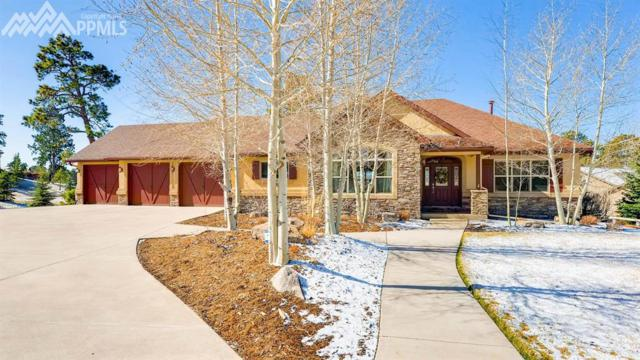 17610 Pond View Place, Colorado Springs, CO 80908 (#9459631) :: Action Team Realty