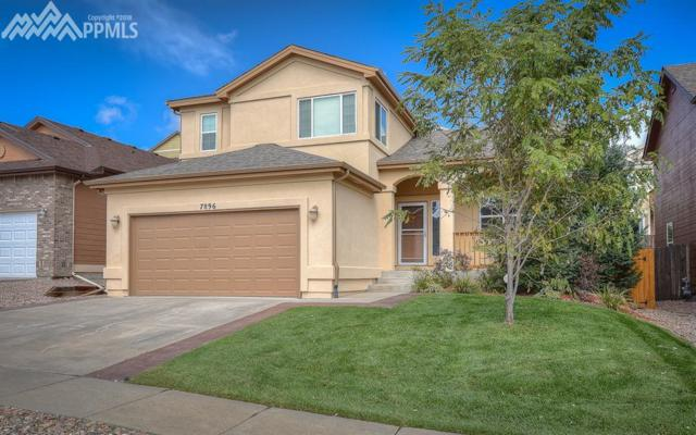 7896 Steward Lane, Colorado Springs, CO 80922 (#9465035) :: The Treasure Davis Team