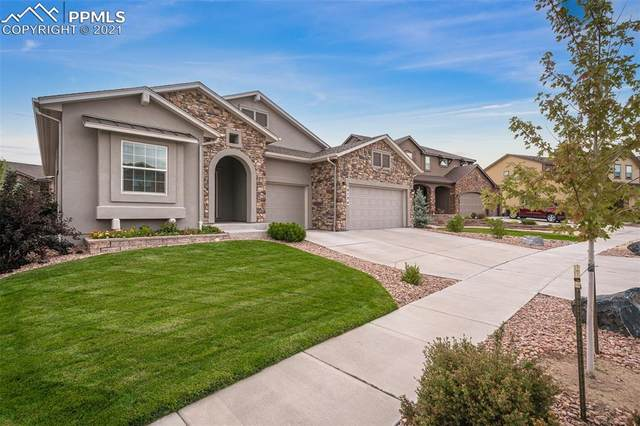 9154 Kathi Creek Drive, Colorado Springs, CO 80924 (#9465737) :: Tommy Daly Home Team