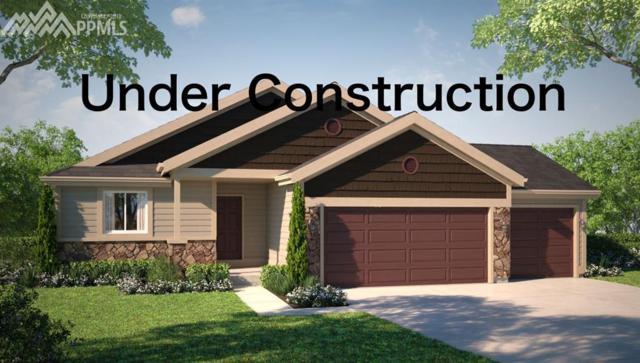 6121 Anders Ridge Lane, Colorado Springs, CO 80927 (#9466824) :: The Treasure Davis Team
