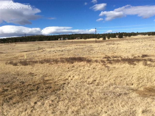 377 Empire Road, Florissant, CO 80816 (#9470773) :: The Peak Properties Group