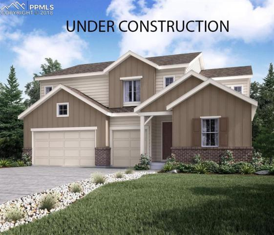 3142 Barbwire Way, Castle Rock, CO 80108 (#9471208) :: CENTURY 21 Curbow Realty