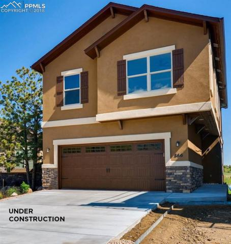 882 Redemption Point, Colorado Springs, CO 80905 (#9471560) :: Fisk Team, RE/MAX Properties, Inc.