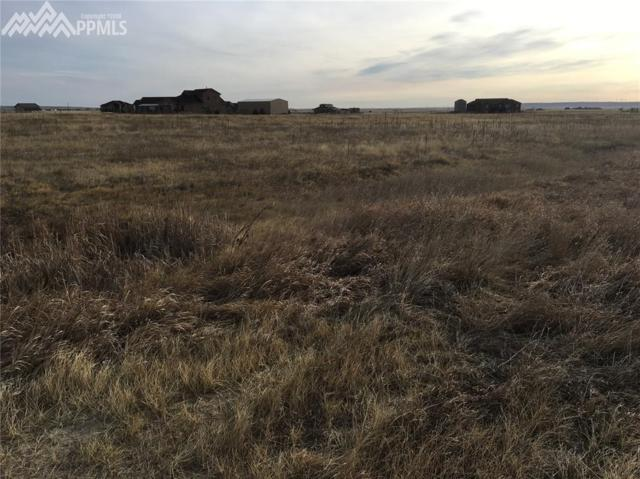 10725 Mckissick Road, Peyton, CO 80831 (#9481005) :: The Peak Properties Group