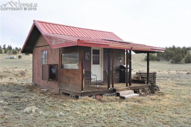 706 Antelope Way, Como, CO 80432 (#9484561) :: 8z Real Estate