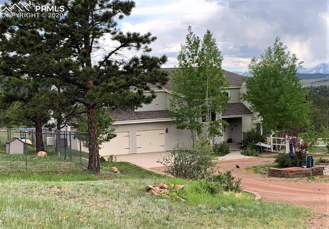 1050 Elk Trail, Westcliffe, CO 81252 (#9485111) :: The Treasure Davis Team