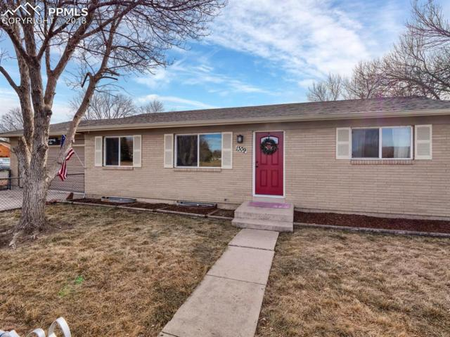 1309 Fetterman Drive, Colorado Springs, CO 80915 (#9485943) :: Harling Real Estate