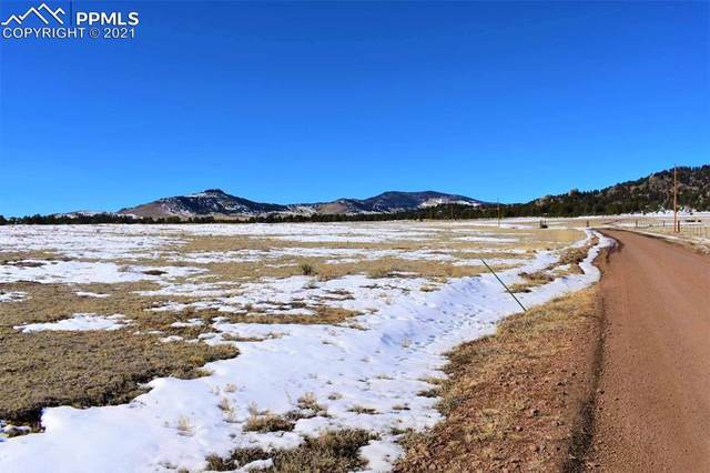 2225 Doe Valley Road, Guffey, CO 80820 (#9487149) :: 8z Real Estate