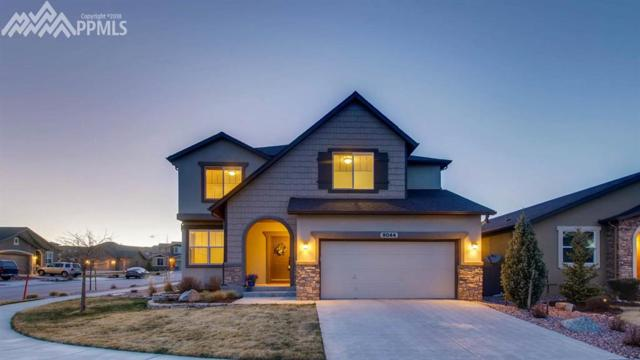 9044 Rollins Pass Court, Colorado Springs, CO 80924 (#9489526) :: Action Team Realty