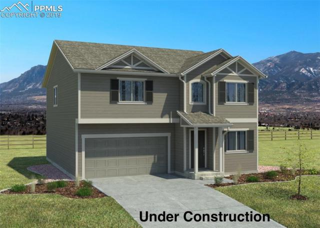 10991 Quercia Circle, Fountain, CO 80817 (#9489698) :: Tommy Daly Home Team