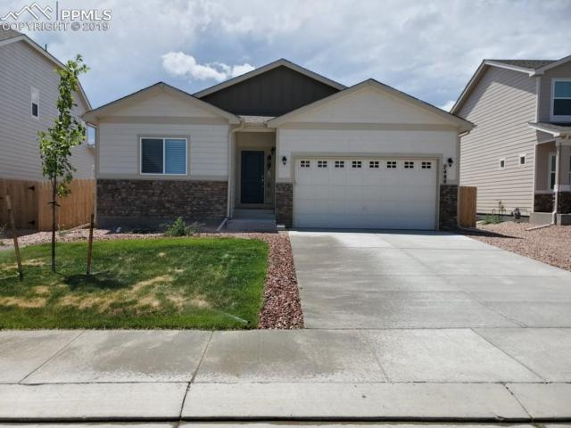 7488 Alpine Daisy Drive, Colorado Springs, CO 80925 (#9489719) :: Action Team Realty