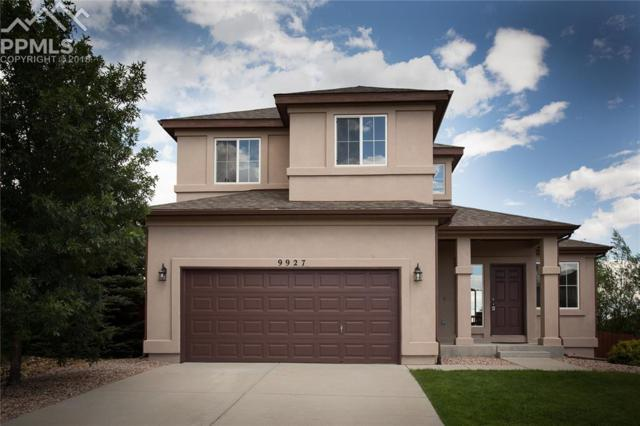 9927 Antler Creek Drive, Peyton, CO 80831 (#9489802) :: The Peak Properties Group