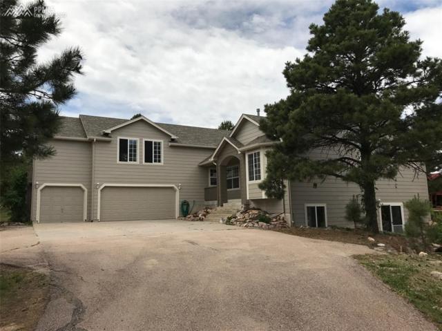 9040 S Blue Sage Circle, Colorado Springs, CO 80908 (#9490946) :: RE/MAX Advantage