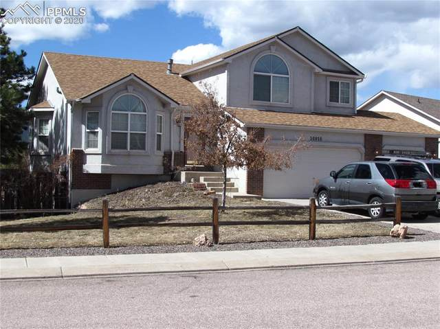 16916 Park Trail Drive, Monument, CO 80132 (#9491348) :: The Treasure Davis Team
