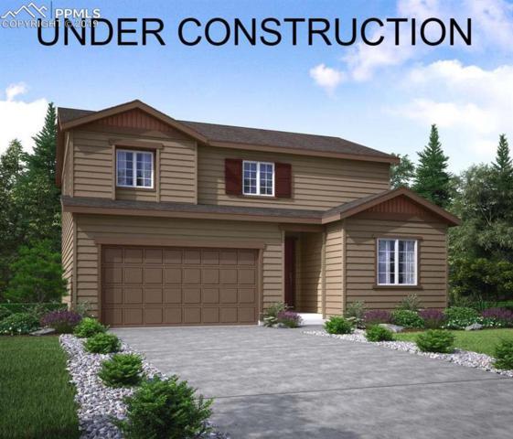 11839 Edenfeld Street, Parker, CO 80134 (#9494105) :: 8z Real Estate