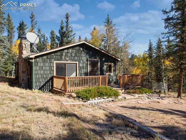 589 W Lake Drive, Divide, CO 80814 (#9495844) :: The Treasure Davis Team | eXp Realty