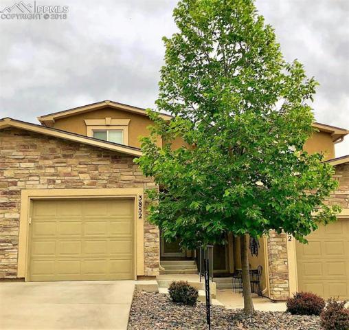 3852 Homestead Ridge Heights, Colorado Springs, CO 80917 (#9502852) :: The Treasure Davis Team