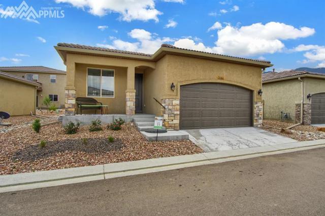 86 Mountain Spirit Point, Colorado Springs, CO 80904 (#9503632) :: 8z Real Estate