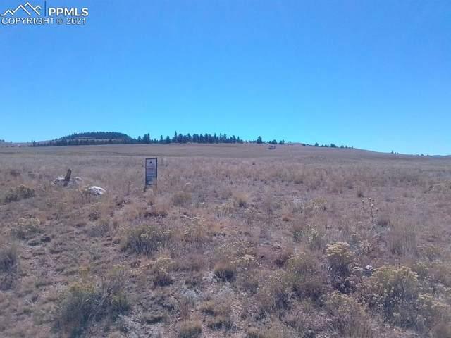 Chicksaw Road, Hartsel, CO 80449 (#9504915) :: CC Signature Group