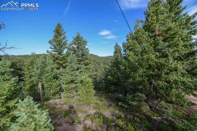 2344 Badger Drive, Larkspur, CO 80118 (#9506741) :: Tommy Daly Home Team