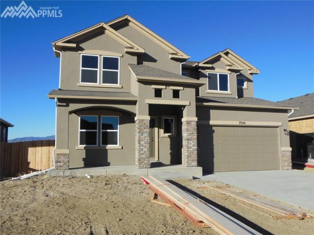 7520 Bigtooth Maple Drive, Colorado Springs, CO 80925 (#9506838) :: CENTURY 21 Curbow Realty