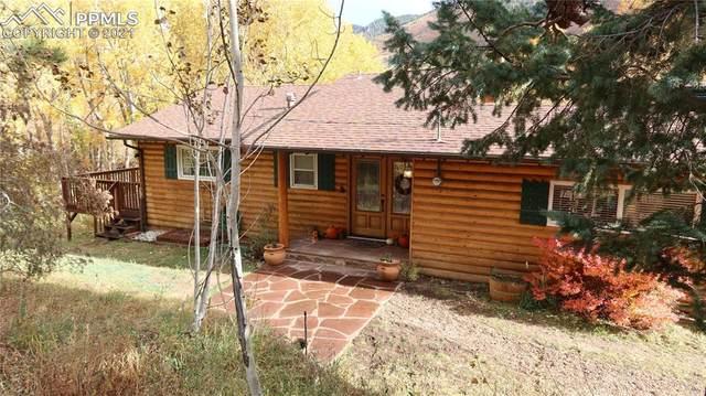 9850 Fountain Road, Cascade, CO 80809 (#9509134) :: 8z Real Estate
