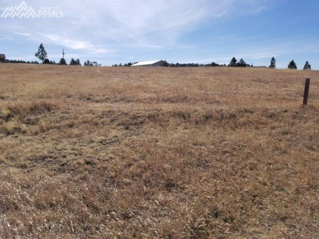 714 Empire Road, Florissant, CO 80816 (#9509935) :: Action Team Realty