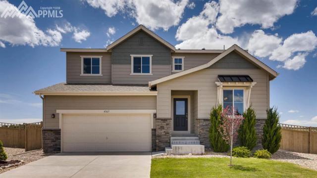 4367 Portmeirion Court, Castle Rock, CO 80104 (#9512215) :: 8z Real Estate