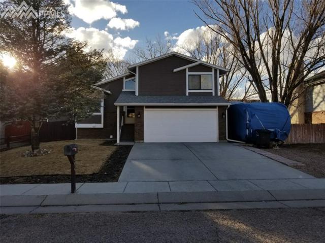 260 Peck Court, Colorado Springs, CO 80911 (#9512754) :: RE/MAX Advantage