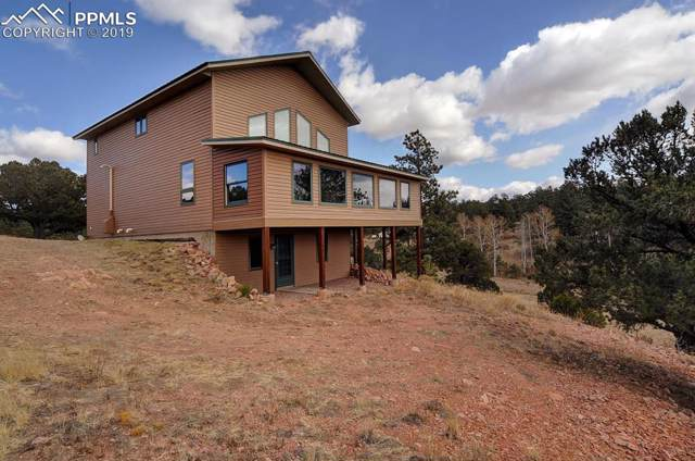 423 Todd Way, Westcliffe, CO 81252 (#9512973) :: HomePopper