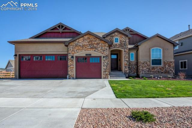 6728 Black Saddle Drive, Colorado Springs, CO 80924 (#9513420) :: The Kibler Group