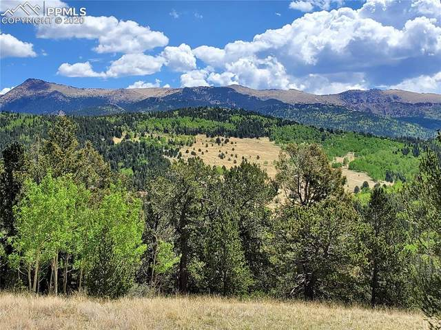 Unassigned Crown Point Circle, Cripple Creek, CO 80813 (#9514598) :: Tommy Daly Home Team