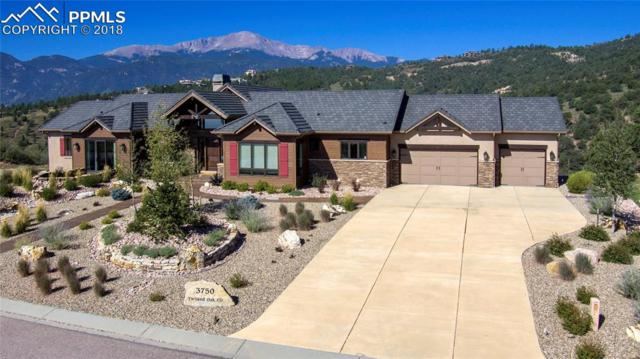 3750 Twisted Oak Circle, Colorado Springs, CO 80904 (#9517076) :: Action Team Realty