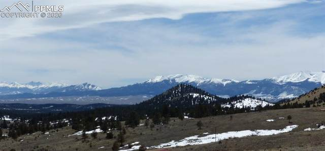 42 County Road 358, Westcliffe, CO 81252 (#9520253) :: The Treasure Davis Team