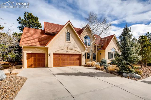 1210 Wentwood Drive, Colorado Springs, CO 80919 (#9521168) :: Venterra Real Estate LLC