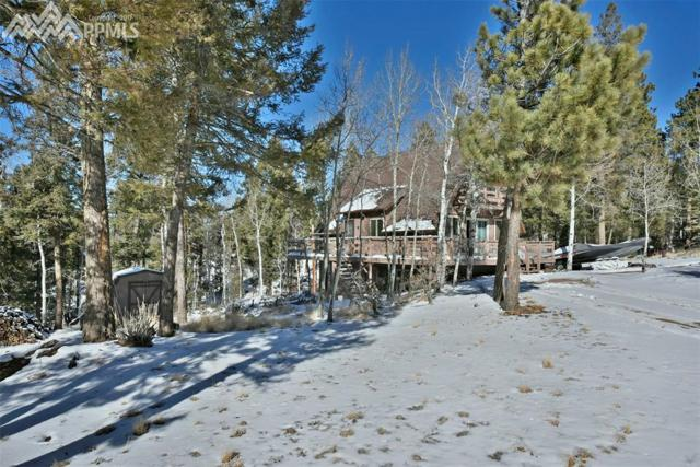 761 Pinewood Road, Florissant, CO 80816 (#9521749) :: The Treasure Davis Team