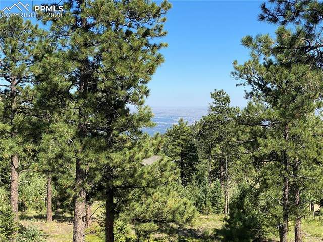 156 Big Bear Road, Manitou Springs, CO 80829 (#9526495) :: The Kibler Group