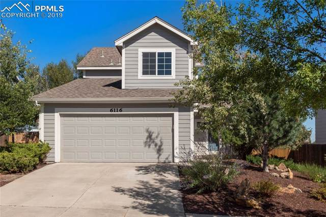 6116 Steed Way, Colorado Springs, CO 80922 (#9527039) :: 8z Real Estate