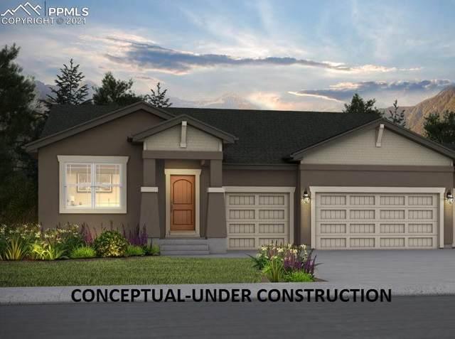 4801 Horse Gulch Loop, Colorado Springs, CO 80924 (#9527464) :: 8z Real Estate