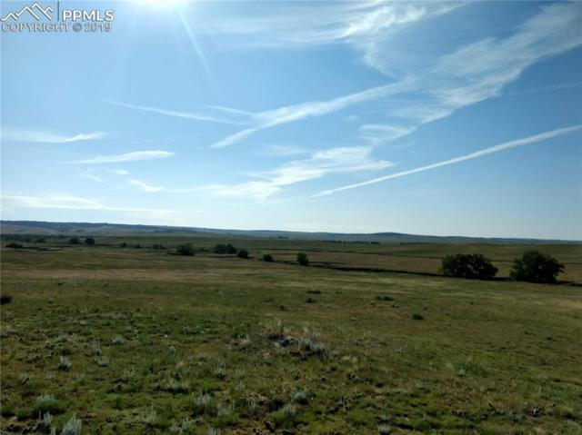 Lot 2 Fiddleback Ranch Circle, Kiowa, CO 80117 (#9529229) :: Action Team Realty