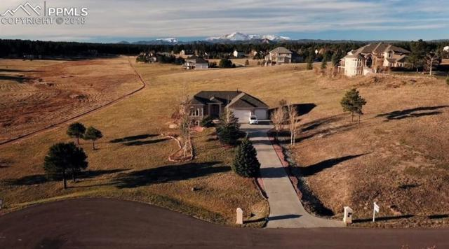 915 E Kings Deer Point, Monument, CO 80132 (#9529903) :: 8z Real Estate