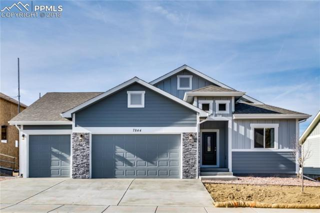 7793 Pinfeather Drive, Fountain, CO 80817 (#9533938) :: Harling Real Estate