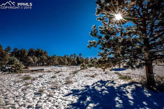 3346 Blue Heron Spring Lane, Colorado Springs, CO 80908 (#9534937) :: The Kibler Group